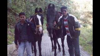 Rohit Friends_Kailash.wmv