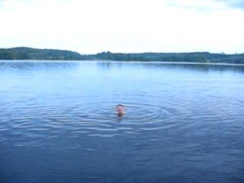 "löytänän "" JOHN holmes "" nude swimming"