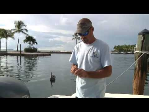 Rigging Ballyhoo as Bait for Trolling