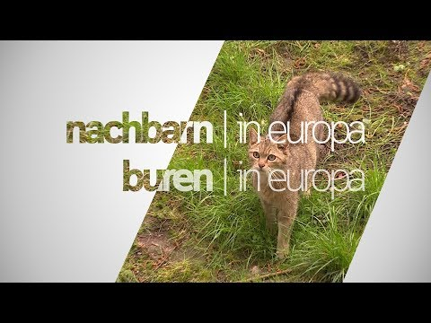 NACHBARN IN EUROPA | BUREN IN EUROPA | #16 | TIERE IN DER GRENZREGION