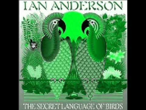 Ian Anderson - The Stormont Shuffle