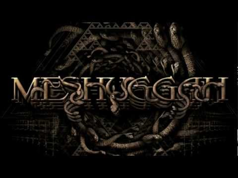 Meshuggah - Do Not Look Down