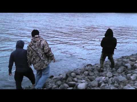 Sturgeon Fishing at Sacramento River 2012