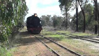 Hotham Valley train ride