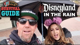 Survival Guide: Our Tips & Tricks on How to Enjoy Disneyland in the Rain!