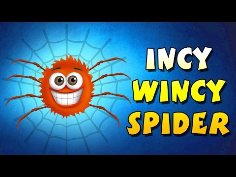 Incy Wincy Spider || 3d Animation || Nursery Rhyme Song video
