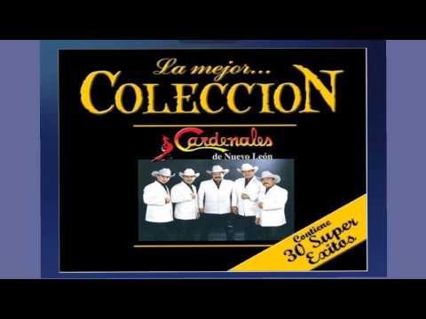 Cardenales de Nuevo León - Espejo De Cantina