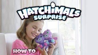 Hatchimals Surprise | How To