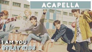 Stray Kids - I am YOU   Acapella