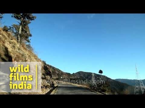 En route Chele la from Haa : Bhutan