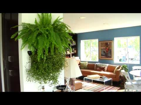 Woolly Pocket - Instant Living Walls with the Wally modular living wall system