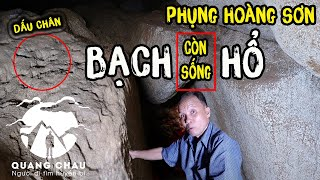 A white-tiger God are hiding in a cave from Phung Hoang mountain to Cam mountain