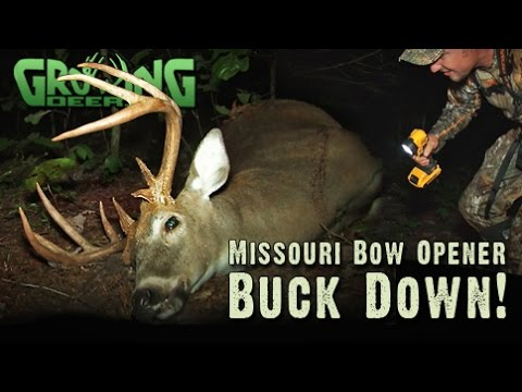 Bow Hunting: Sit Down, Shut Up, And HUNT