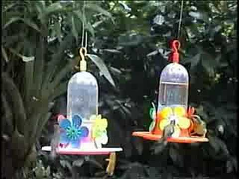 Jardin de los Picaflores-Puerto Iguazu
