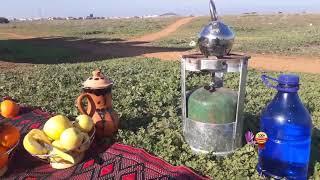 شاي الشيبة له طعم خاص لذيذ جدا في الريف و البادية مع اجمل صباح للجميع