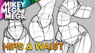 How To Draw HIPS & WAIST