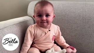 Baby food vs. solid food!? Brie wants your advice for little Bird!