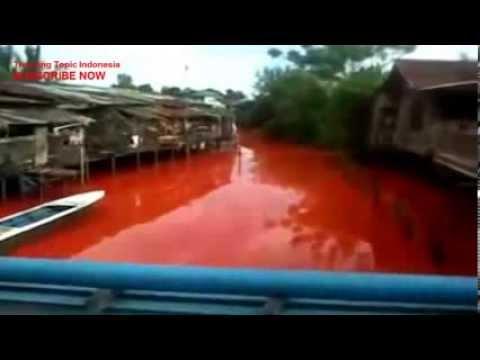 Sungai Merah Bontang Fenomena Air Sungai Merah di