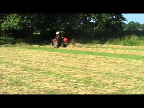 Fergie turning hay, Ferguson TEF, raking , Massey-Ferguson with Vicon acrobat