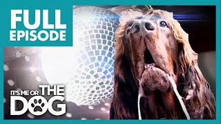 The Dog With OCD: Max | Full Episode | It's Me or The Dog