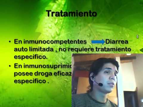 cryptosporidium parvum video.wmv