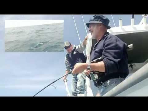 Jock School Shark Fishing aboard Sea Spray Charters