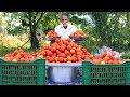 Tomato Rice Recipe | Simple and Easy Tomato Rice  By Grandpa Kitchen