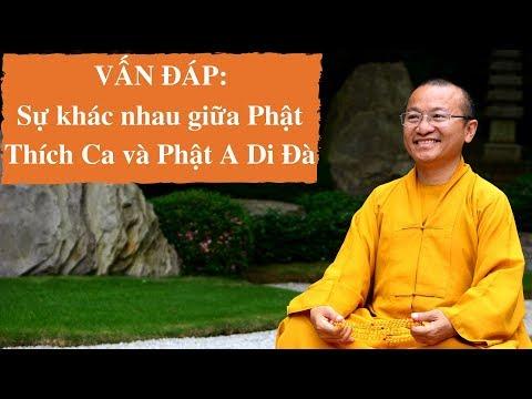 Vấn đáp: Sự khác nhau giữa Phật Thích Ca và Phật A Di Đà