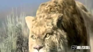 Buz Devri Canavarları HD Türkçe Dublaj Belgesel