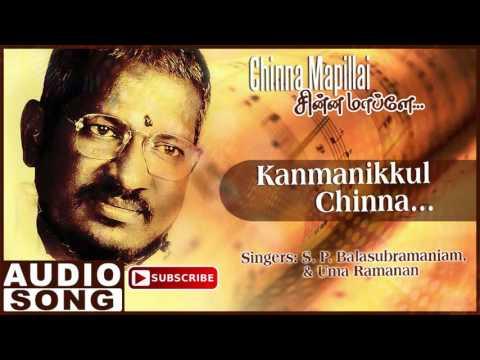 Kanmanikkul Chinna Song   Chinna Mapillai Tamil Movie   Prabhu   Sukanya   Ilayaraja   Music Master