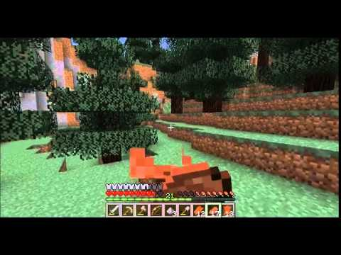 Talx plays: Minecraft! ep 13- A new companion