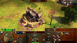 Age of Empires 3 - French Mirror