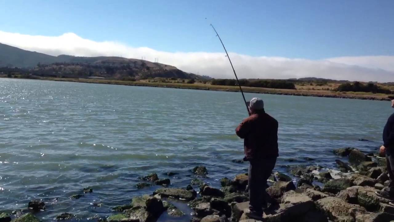 bay area fishing sf youtube