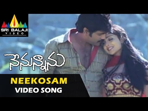 Neekosam Video Song - Nenunnanu video