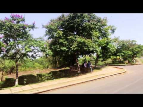 Pace Mangalore video