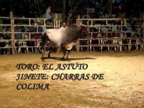 LOS DESTRUCTORES EN HUITZUCO GRO. 2011.