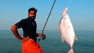 അർത്തുങ്കൽ കടൽ മീൻ പിടിച്ച് പുളിയൻ മാങ്ങയിട്ട് കറിവെച്ചത് | Giant Trevally Fish Catch And Cook