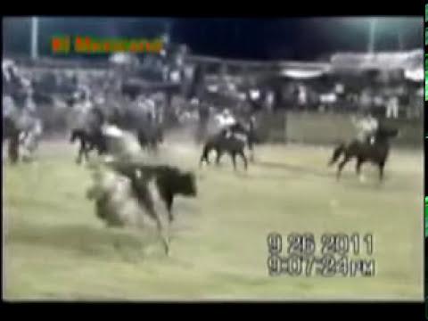 panchocot 30 de octubre 2011