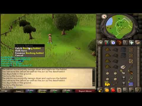 Tek It Eazy ~ 1-99 Hunter guide ~ Oldschool runescape