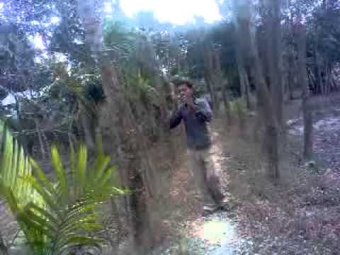 Bangla Song Best Of Asif And Johirul Islam Song. Dhubri. Assam video