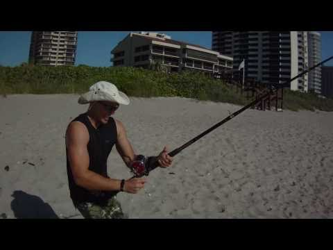 Saltwater Fishing - Monster Barracuda