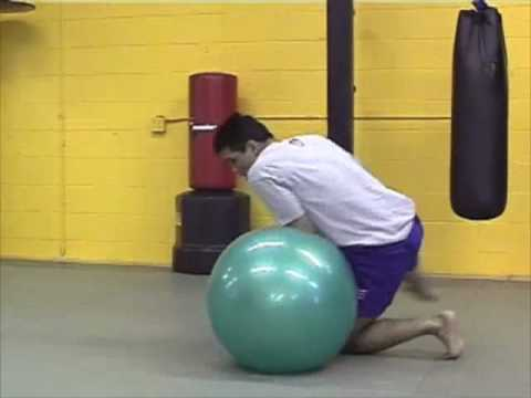 Frank Shamrock MMA Training Image 1