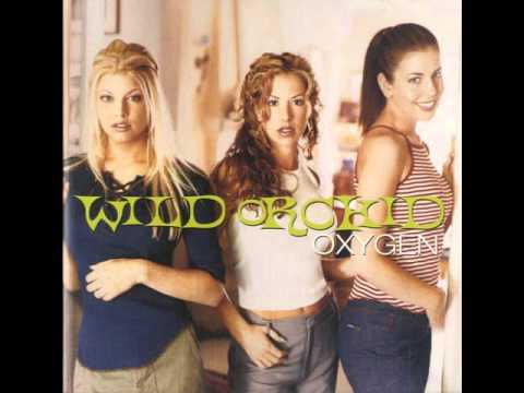 wild orchid - It