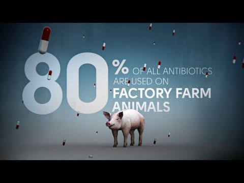 Fix Food - Fix Antibiotics - Meat Without Drugs