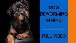 Deworming in dogs ( how to deworm your dog)