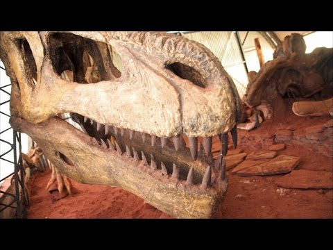 Supporting Paleontological Research in Argentina