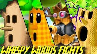 Evolution of Whispy Woods Battles (1992-2018)