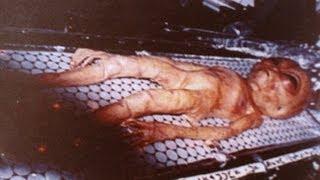 Инопланетяне действительно существуют. Неопровержимые доказательства!