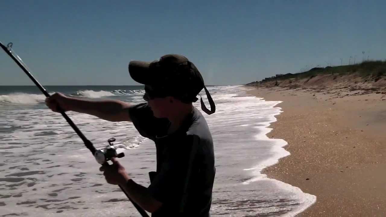 Bonnethead shark fishing images for Surf fishing for sharks