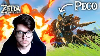 Reacting to the BEST Breath of the Wild Players in the WORLD